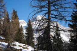 inverno7_San_Sebastiano_Folgaria_albergo_al_sole