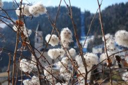 inverno_San_Sebastiano_Folgaria_albergo_al_sole